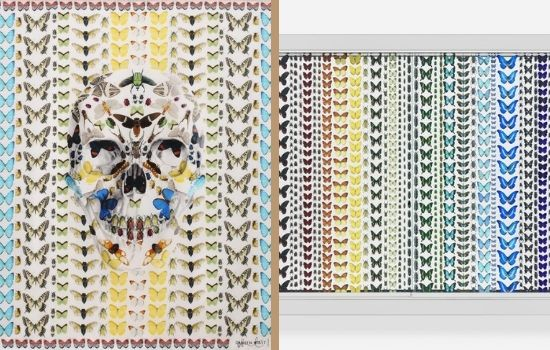Read more about the article Alexander McQueen and Damien Hirst 2013